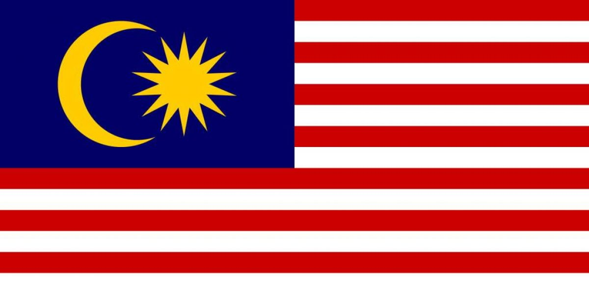 msia flag